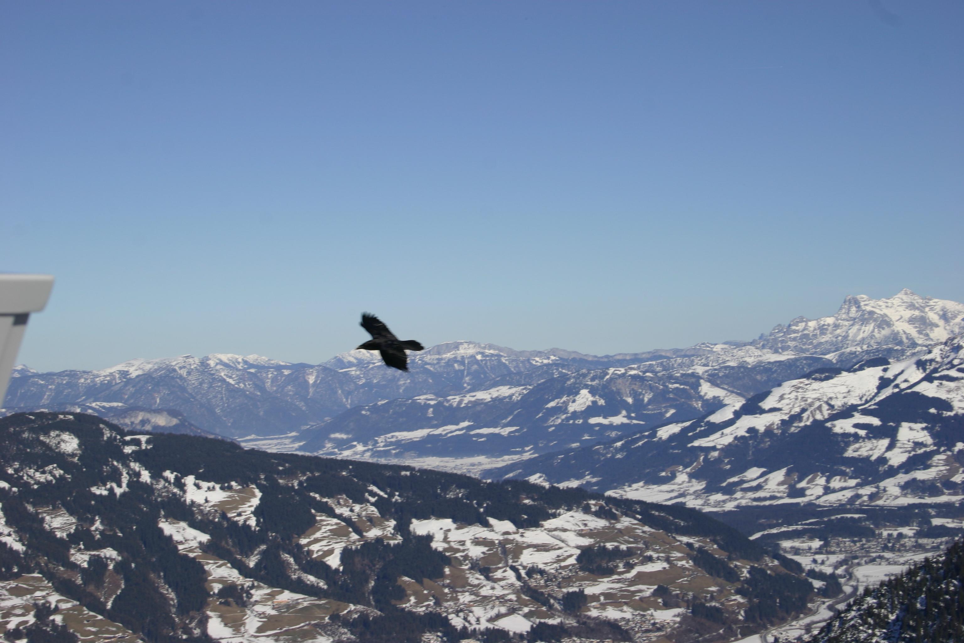 Kitzbüheler Alpen 100 - Dag 1