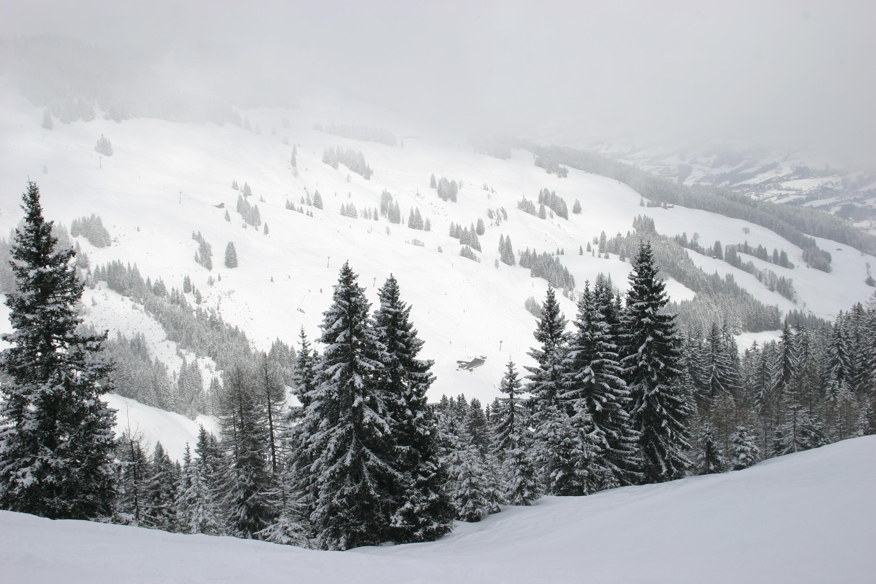 Kitzbüheler Alpen 492 - Dag 6