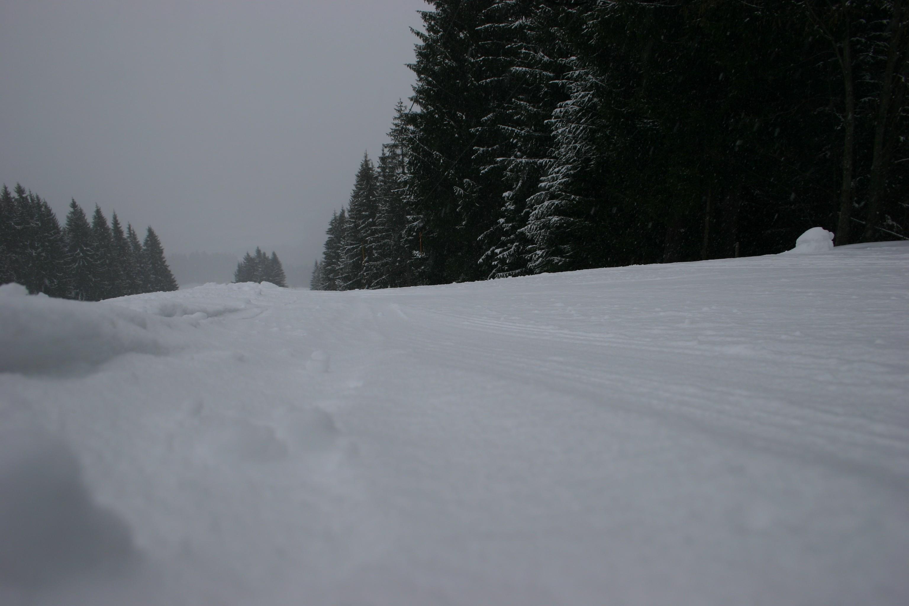 Kitzbüheler Alpen 181 - Dag 2