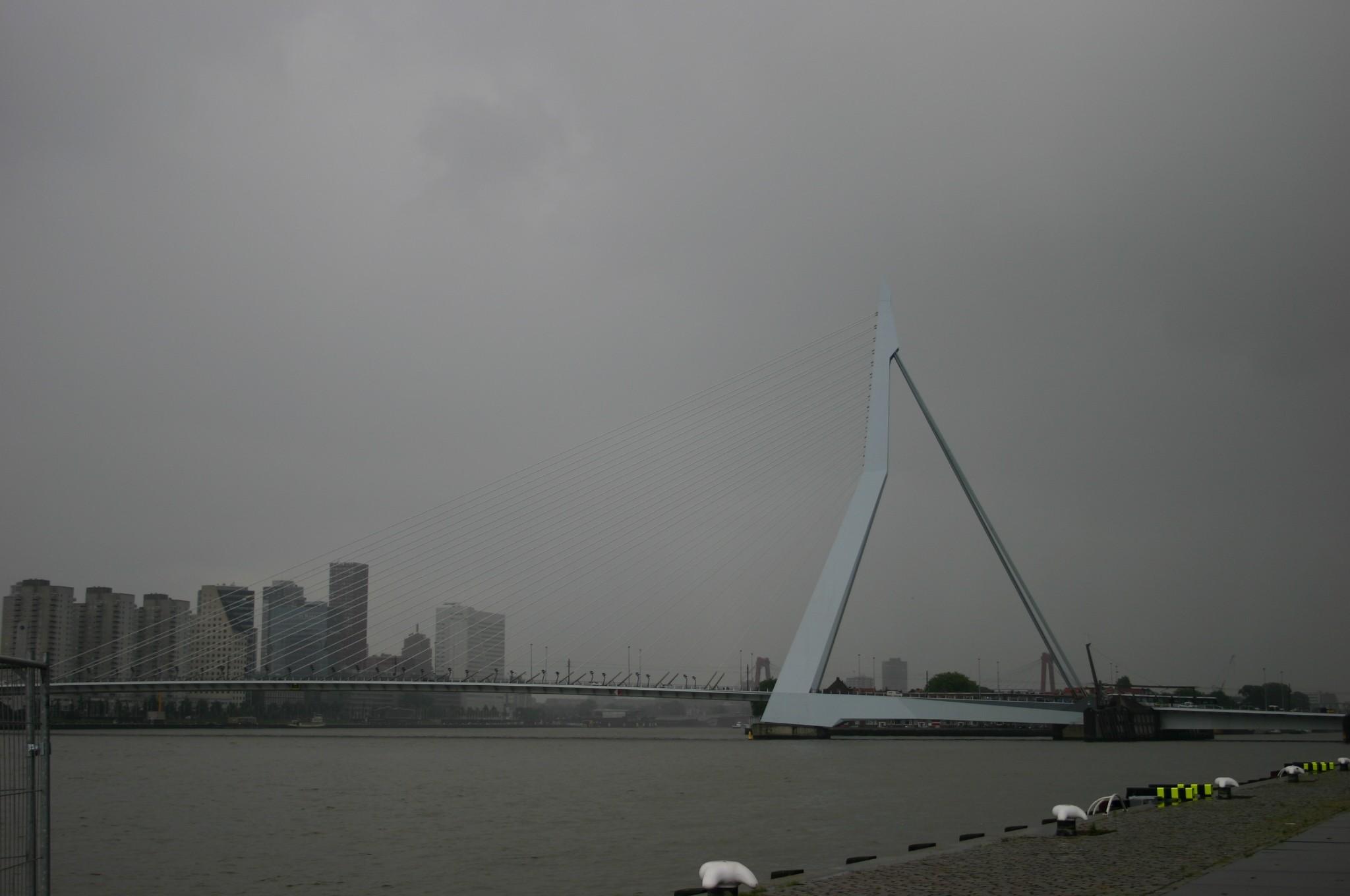 Rotterdam De Trap 003